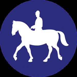 馬と人と青
